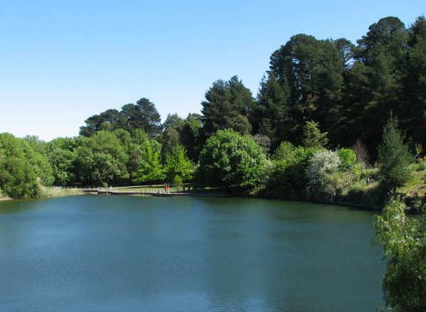Wilson Botanic Garden